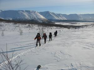 Туристические лыжи. Как выбрать    Заброска.рф fbb9c41a507