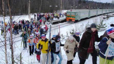 Лыжные походы выходного дня: СПб и окрестности