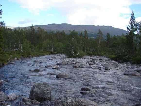 Тропа вдоль реки