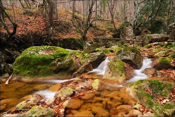 Мутные воды Большого каньона Крыма