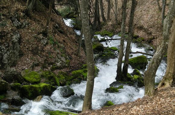 Большой каньон Крыма: источник Пания
