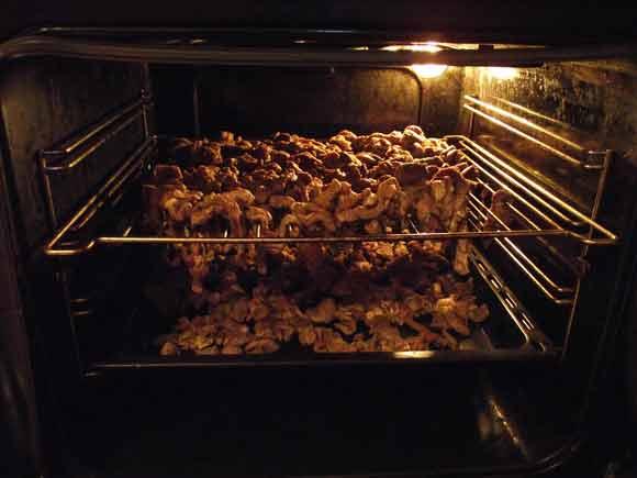 Как сублимировать мясо в домашних условиях 209