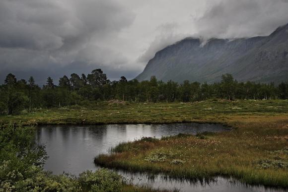 Национальные парки Швеции: болотистый Сарек