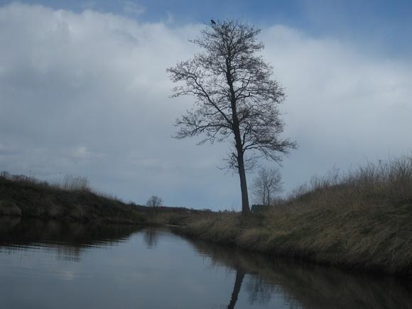 Река Вьюн ниже Запорожского