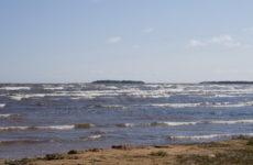 Бурная Ладога: несложный маршрут для походов с детьми на байдарке (река Вьюн – река Бурная – Ладожское озеро)