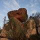 Сейд Летучий камень и скалы Праудедки: путешествие в затерянную Лапландию. Фотоотчет