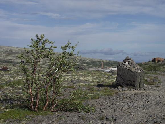 Вид с Ловозерских тундр на рудник Карнасутр