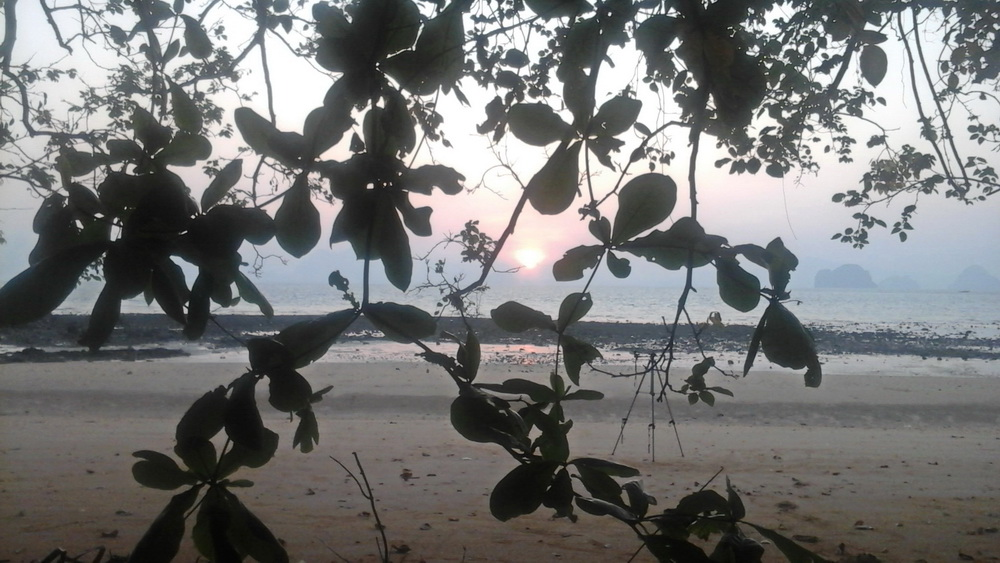 Коралловый заповедник острова Ко Яо Ной