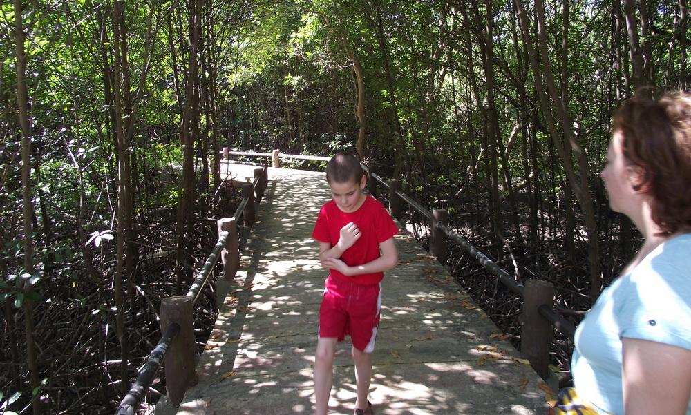 Лучшие острова Таиланда мы увидели в нашем байдарочном походе по островам Андаманского моря